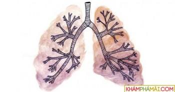 Khác biệt giữa phổi của người khỏe mạnh và người hút thuốc 20 năm