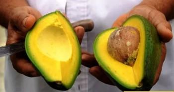 9 thực phẩm giúp giảm cholesterol tự nhiên