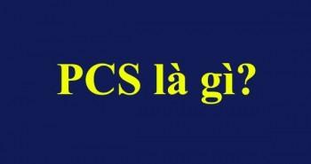 PCS là gì? ý nghĩa của nó và cách tính